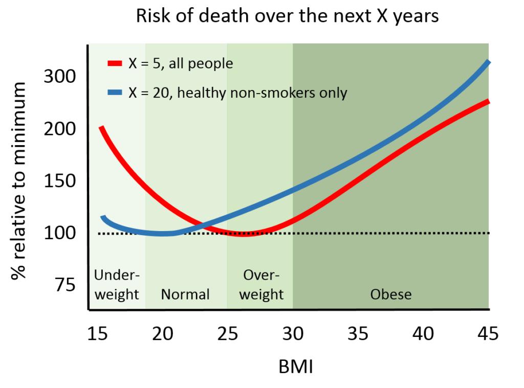 obesityparadox